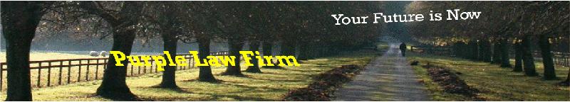 Estate planning attorneys